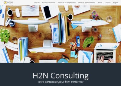 H2N Consulting